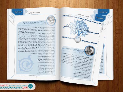 قالب آماده نشریه وزیری ایندیزاین